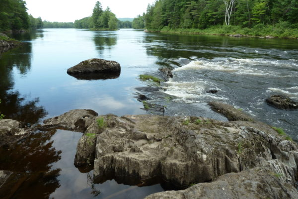 ledge-at-campsite-above-whetstone-falls-where-they-saw-moose-and-baby-cr