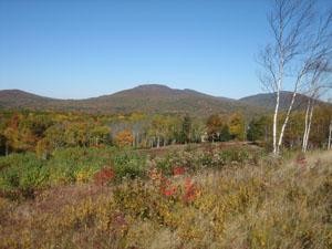 Beech Hill Preserve. Photo by Kristen Lindquist of Camden, Maine