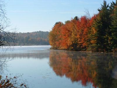 Fall in Turner. Photo by Judi Keene of Wales, Maine.