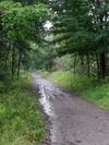 Jay Farmington Rail Trail