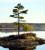 conservationleadershipawards2015tmb