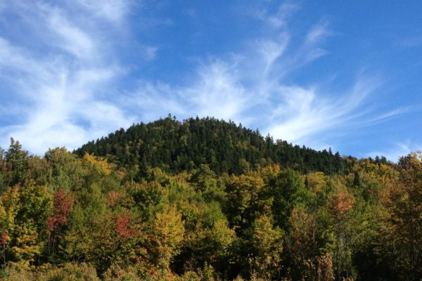 Bald Mountain by Todd Martin public reserved land