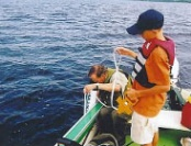 Volunteers Help Keep Maine Waters Strong for Future Generations