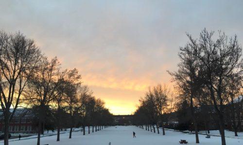 UMaine campus in winter. Photo by Sophie VanDerburgh