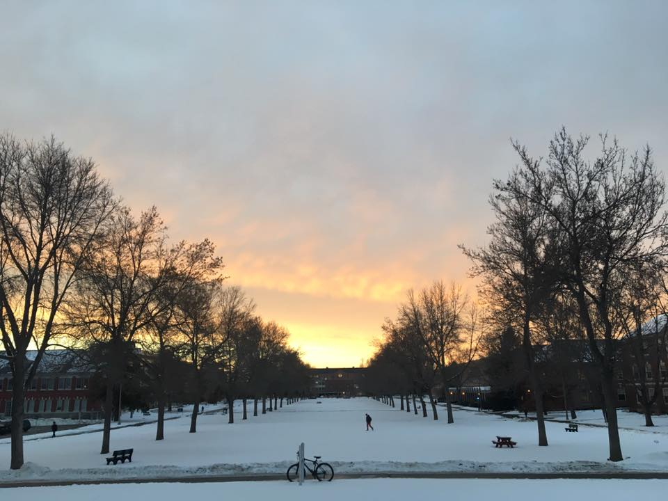 UMaine campus in winter. Photo by Sophie VanDerburgh