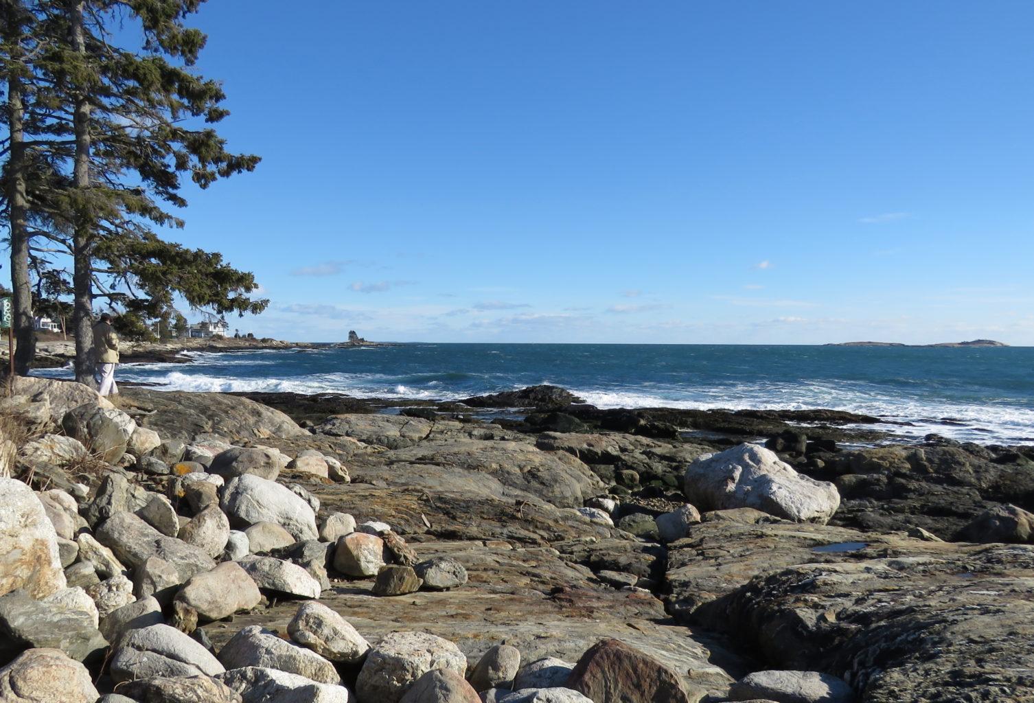 Ocean Point East Boothbay Jayne Winters