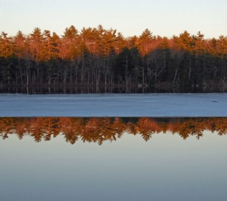 ice out on Dyer Long Pond