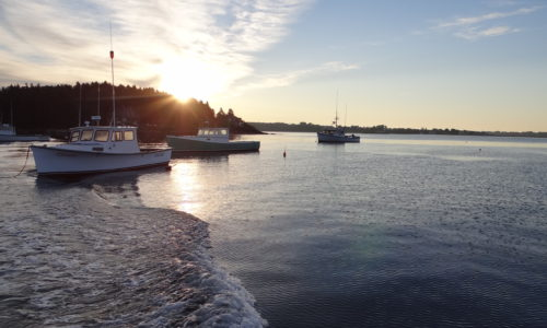 "Thursday, June 29: ""The Future of Maine's Fisheries"" Roundtable, Portland"