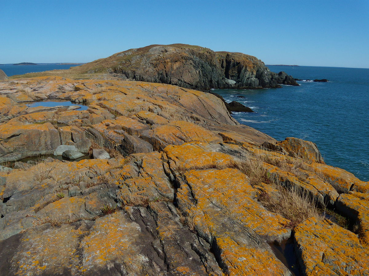 Brothers Island off the Down East coast of Maine (Jonesport) by Tom Meredith