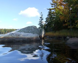 Snow Cove Preserve