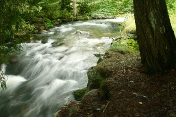 clean water for maine Tunk Stream from TunkLake
