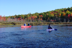 Androscoggin River Access