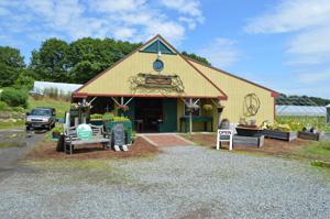 Jordan Farm