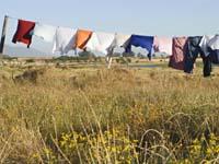Line Dry Laundry