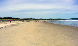Scarborough Beach. Photo courtesy of Land for Maine's Future and its partners.