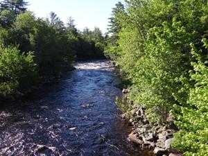 Machias River Project