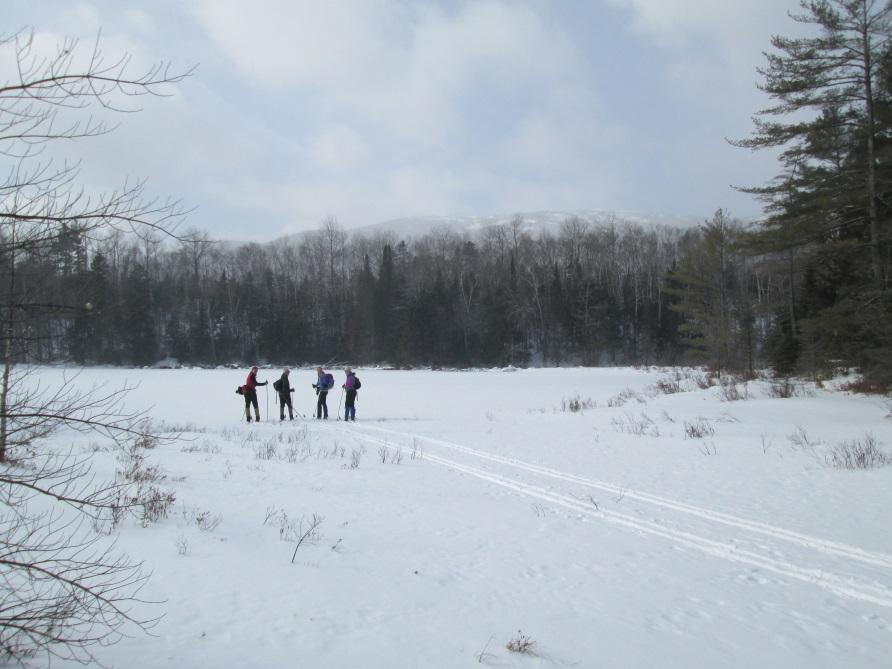 skiers near frozen pond