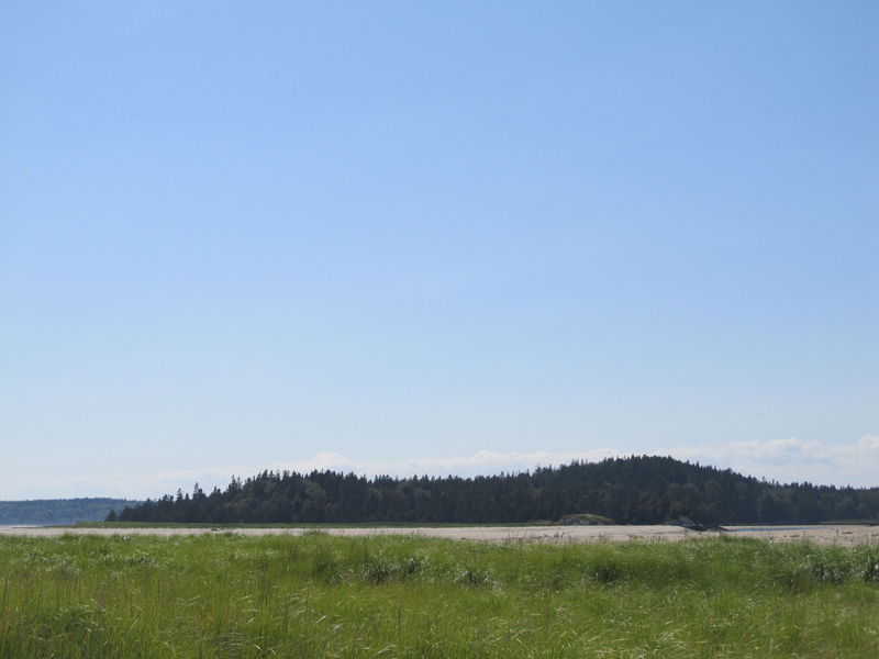 Morse Mountain from Popham Beach