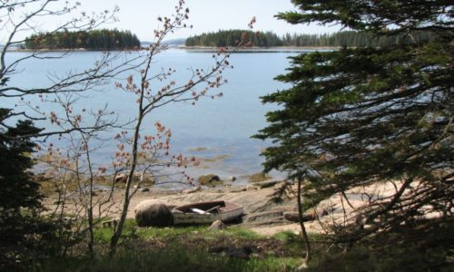 My Maine This Week: Rick Alexander