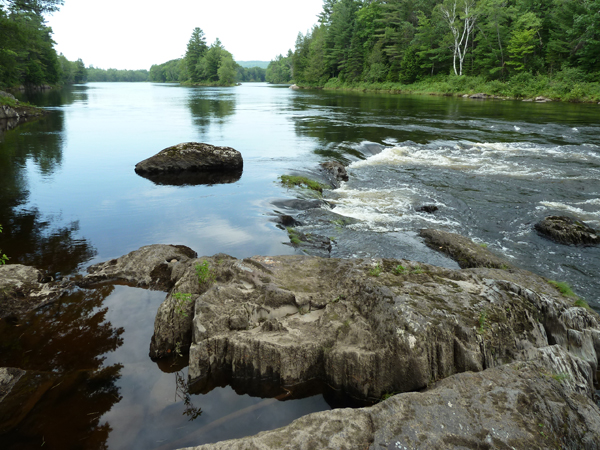 ledge at campsite above Whetstone Falls where they saw moose and baby cross river