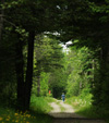 Aroostook Rail Trail