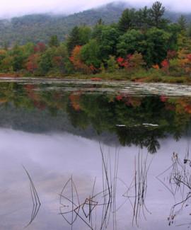 Beaver Pond below Pleasant Mtn RVP
