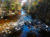 Ducktrap Preserve Lincolnville