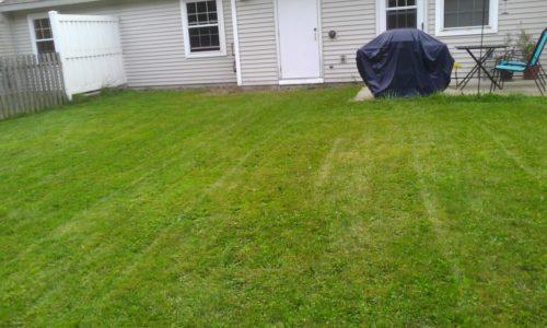 Update Your Lawnmower