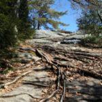 Bradbury Mtn Maine