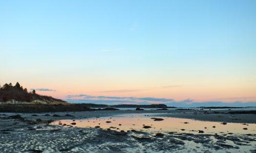 Clark Island Beach Spruce Head