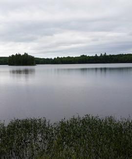 Jamies Pond