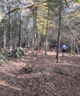 Sheepscot Wellspring Land Alliance trails