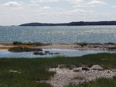 Skolfield Shores Preserve