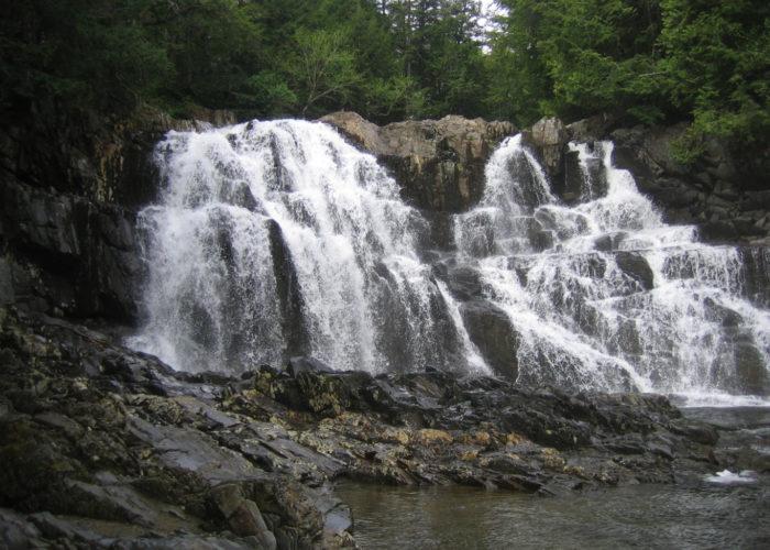 Houston Brook Falls in Pleasant Ridge Plantation