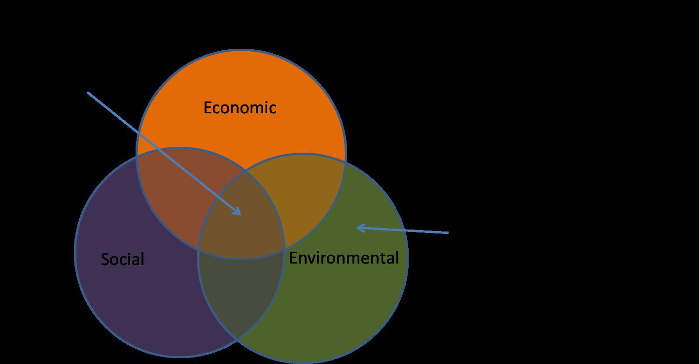 sustainability basics