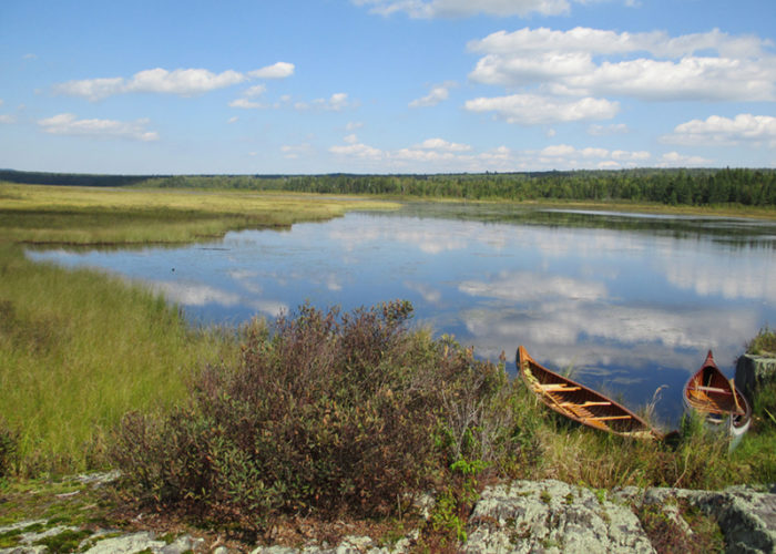 West Shirley Bog