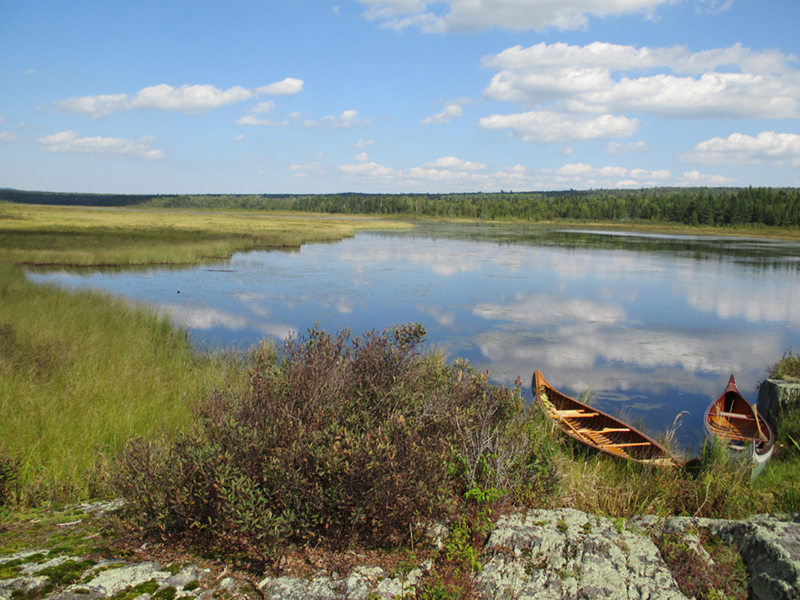 West Shirley Bog by Sam Horine