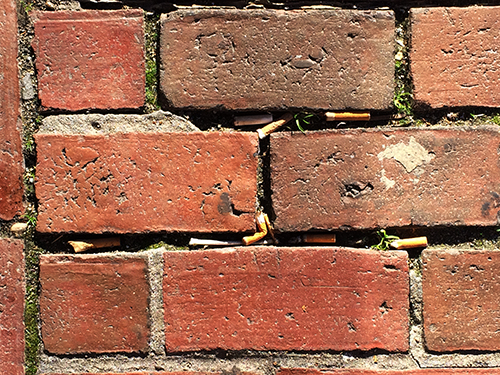 cigarette butts4