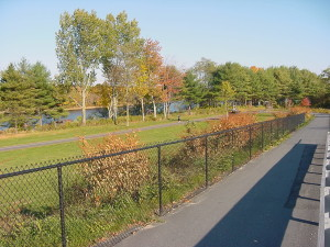 Why Choose Complete Streets?
