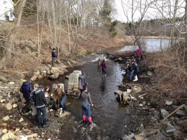 Students conducting experiments in stream
