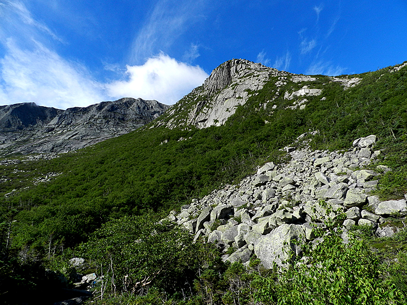 Looking up the Cathedral Trail Katahdin BSP Kevin Hardwick