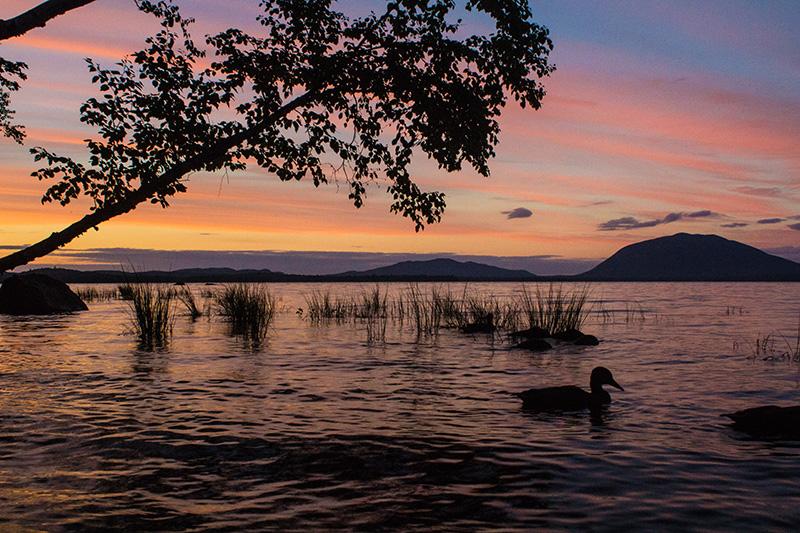 sunset Spencer Bay