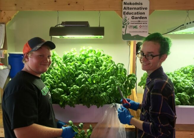NAE Academy students working on their Aquaponics system