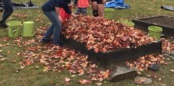 covering beds with leaves