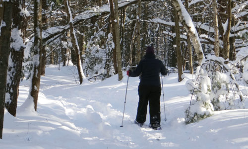 snowshoeing on Brunswick Commons