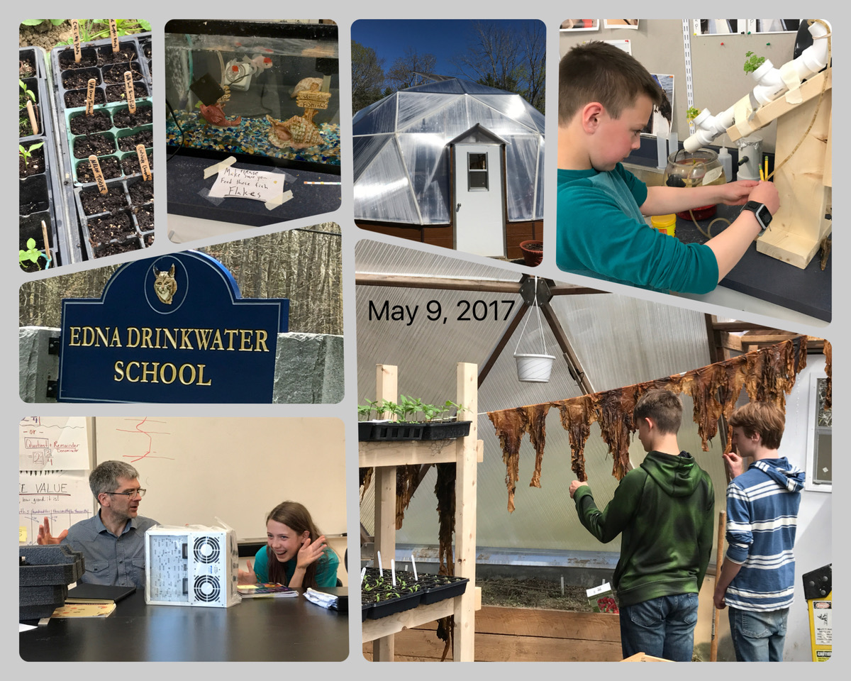 Edna Drinkwater School collage 2017