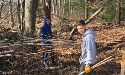 Gorham Middle School students tackle invasive species