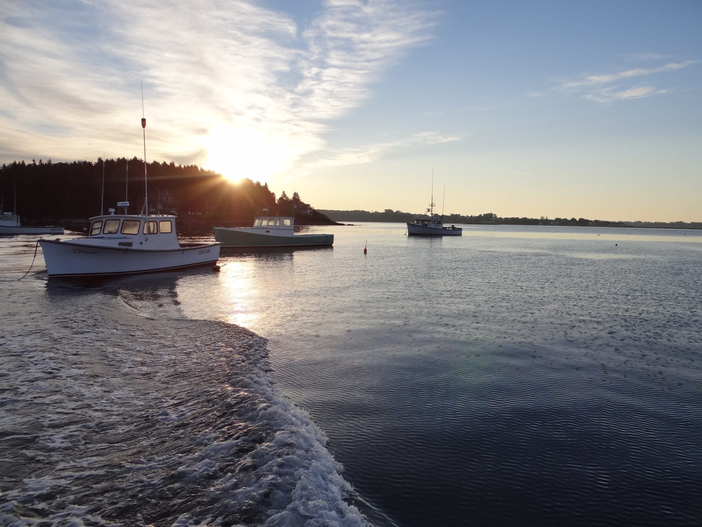 sunrise and lobster boats in Potts Harbor, South Harpswell, Maine