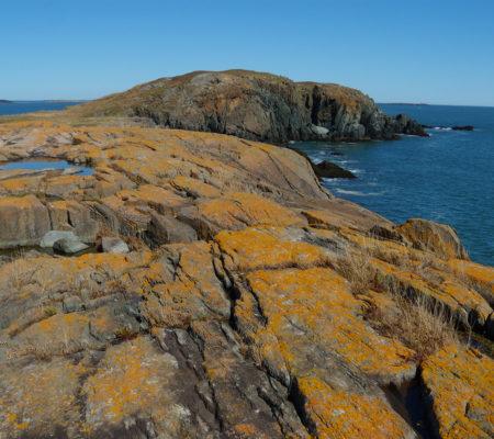 Brothers Island off the Down East coast of Maine (Jonesport)