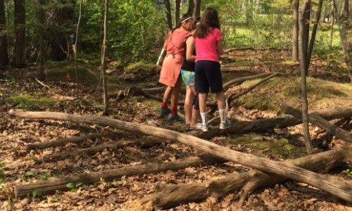 Memorial Middle School Students Head Outdoors to Study Maine's Environment
